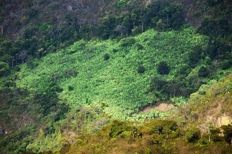 Reserva Natural Serra das Almas, no Ceará (foto Renato Stockler/Na Lata)